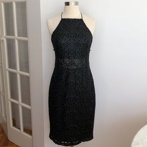 New Ralph Lauren Embroidered Mesh Lace Dress